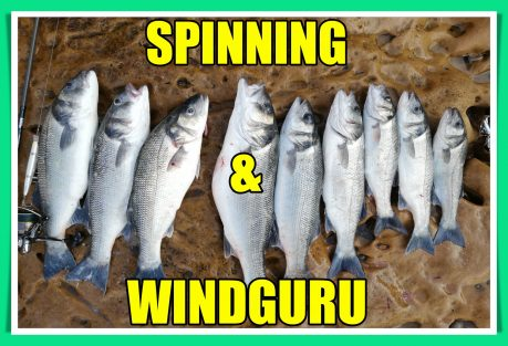 Spinning & Windguru